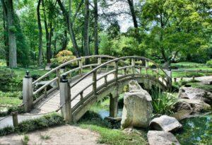 bridge 53769 1920
